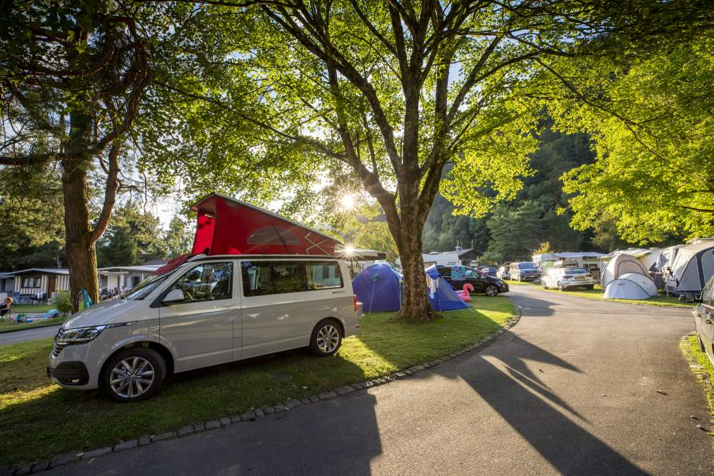 Reservationsanfrage | CAMPING MANOR FARM | Interlaken-Thunersee